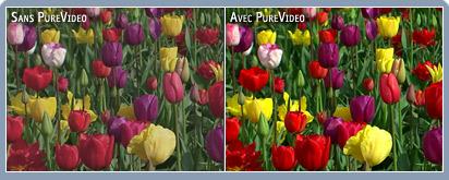 http://www.nvidia.fr/docs/CP/11056/color_fr.jpg